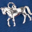 Silver Horse Jewelry: Shine and Sparkle for the Fall